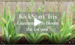 Kickstart Iris