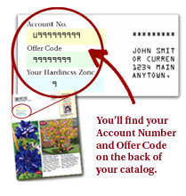 SpringHill Catalog Backcover Account No. & Offer Code