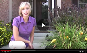 How to Clean Your Daylily Flower Beds