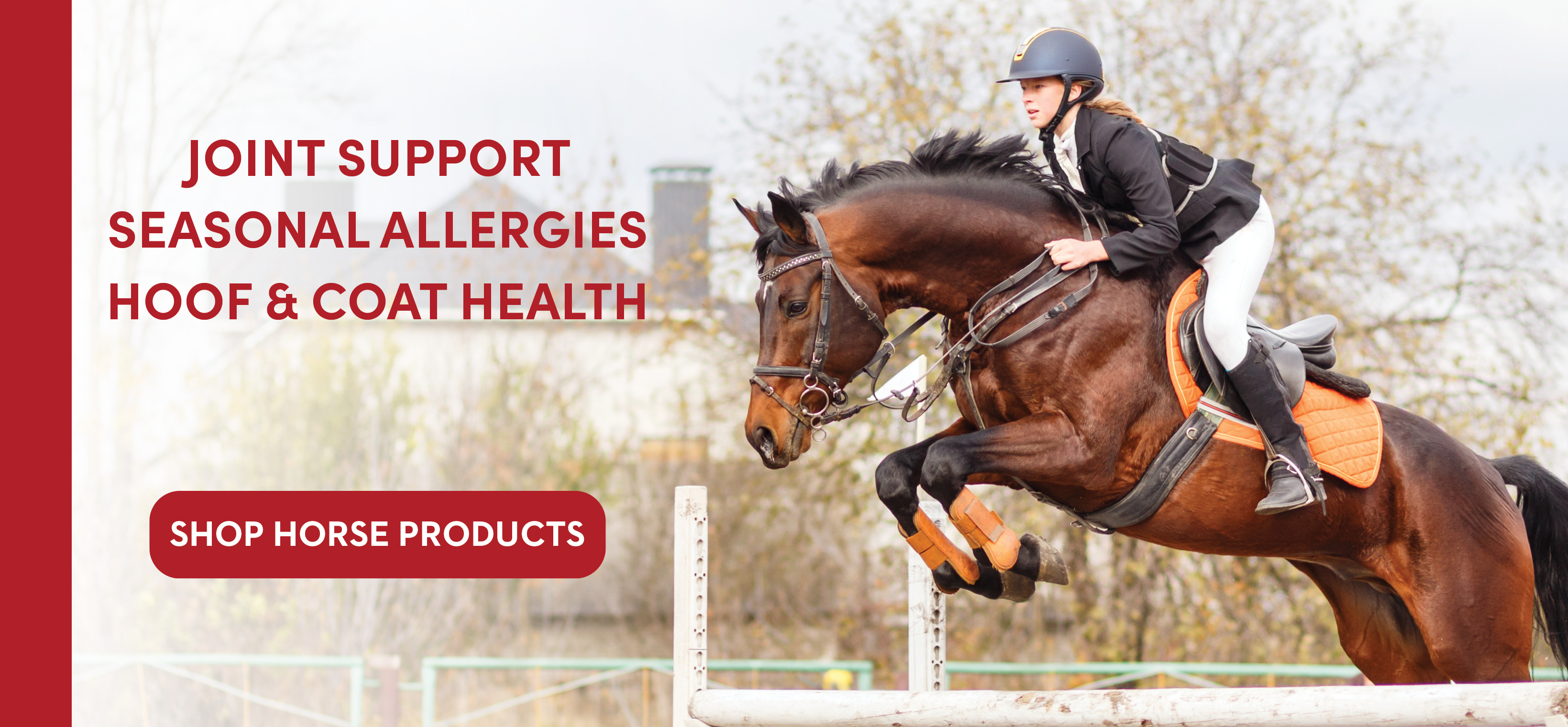 Springtime's Natural Horse Supplements