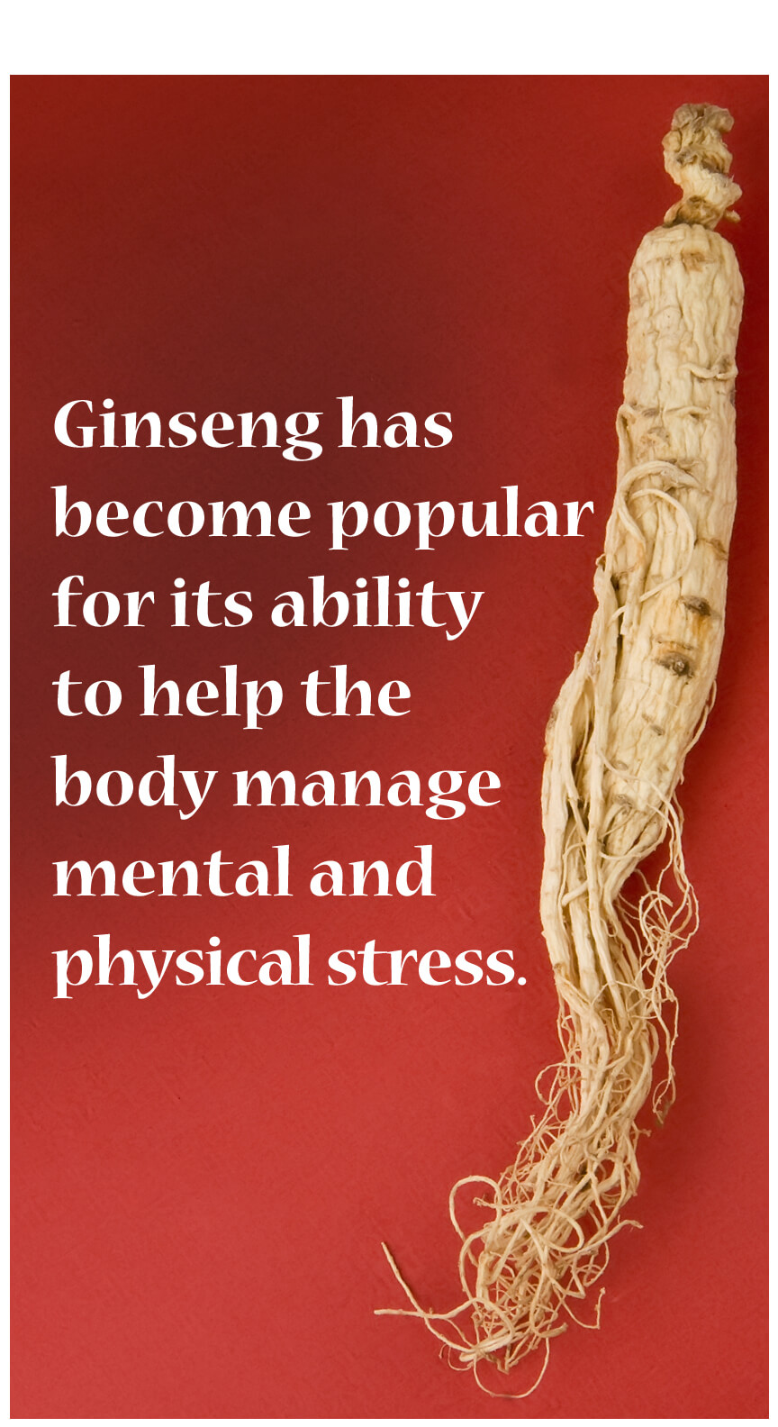 Ginseng is probably most well known for its ability to enhance mood, vitality, and rejuvenation.