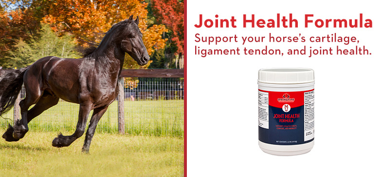Joint Health Formula. Support your horse's cartilage, ligament tendon, and joint health.