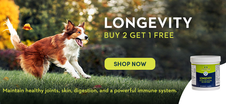 LONGEVITY BUY 2 GET 1 FREE. SHOP NOW. Maintain healthy joints, skin, digestion, and a powerful immune system.