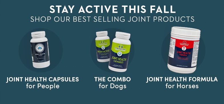 Springtime's supplements for joint health are made with superior joint lubricants to help with occasional stiffness associated with aging and post strenuous activity discomfort.