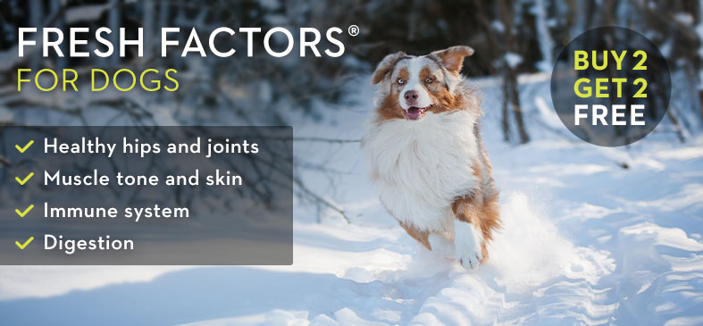 FRESH FACTORS FOR DOGS. Healthy hips and joints. Muscle tone and skin. Immune system. Digestion. BUY 2 GET 2 FREE