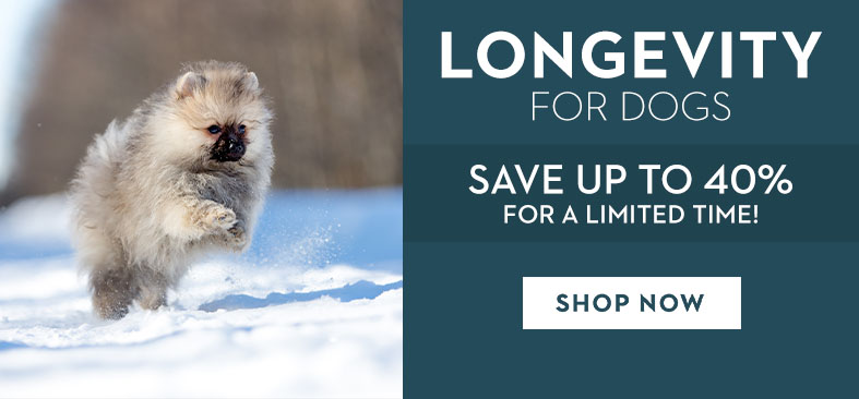 LONGEVITY FOR DOGS. SAVE UP TO 40% FOR A LIMITED TIME! SHOP NOW