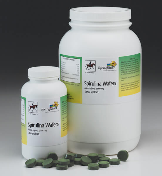 Spirulina Wafers for Horses & Dogs