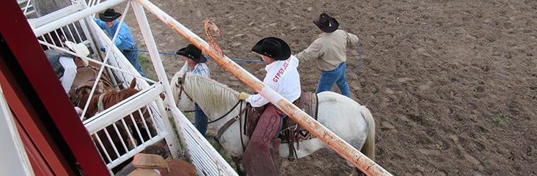 rodeo-mast