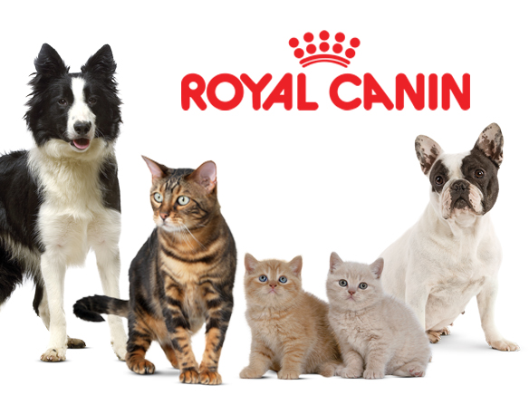 Stoneback Vet Food Center featuring Royal Canin