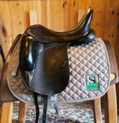 "Custom Icon Eclipse Dressage Saddle-17.5""-Medium-Black w/red welting"