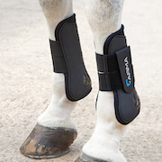 Shires ARMA Tendon Boot