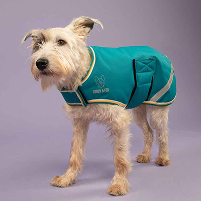 Shires Digby&Fox Waterproof Dog Coat