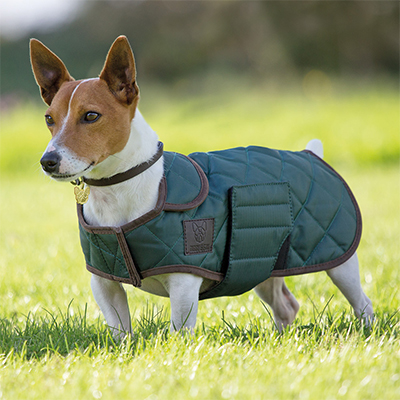 Shires Digby&Fox Quilted Dog Coat
