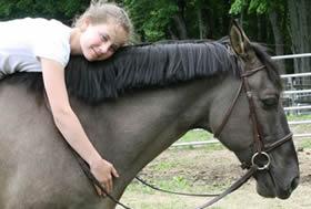 Horse Bit Photo