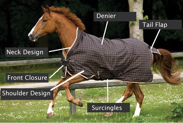 Horse Blanket Replacement Tail Strap