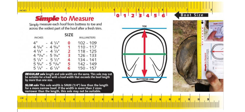 Cavallo Simple Boot Size Chart