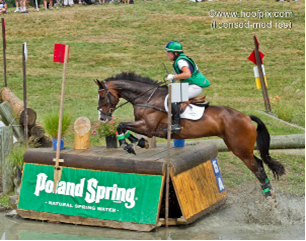 Horse Reins Photo