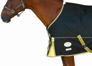 Horse Blanket Shoulder Design