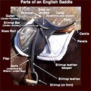 Saddle Resources