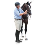 Ovation EuroWeave Front Zip 4-Pocket Men's Knee Patch Breech