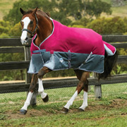 Weatherbeeta ComFiTec Premier Free Standard Neck Medium Turnout