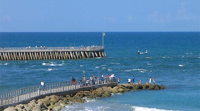 Sebastian inlet fishing surfcaster 39 s journal for Sebastian inlet fishing report