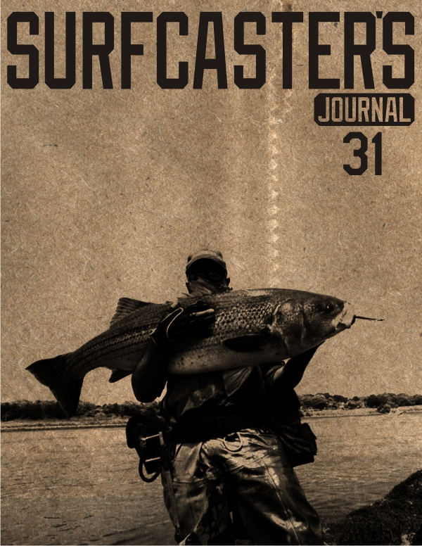 31cover