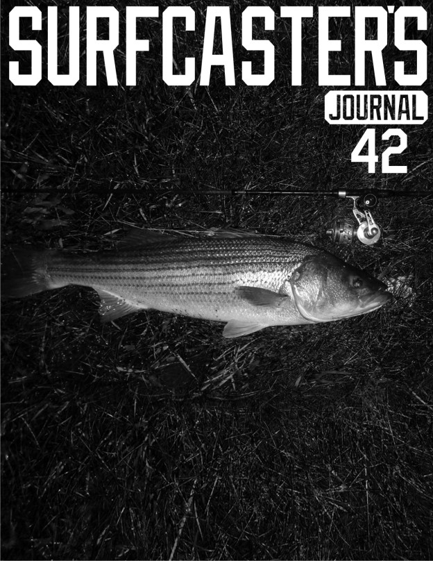 issue42