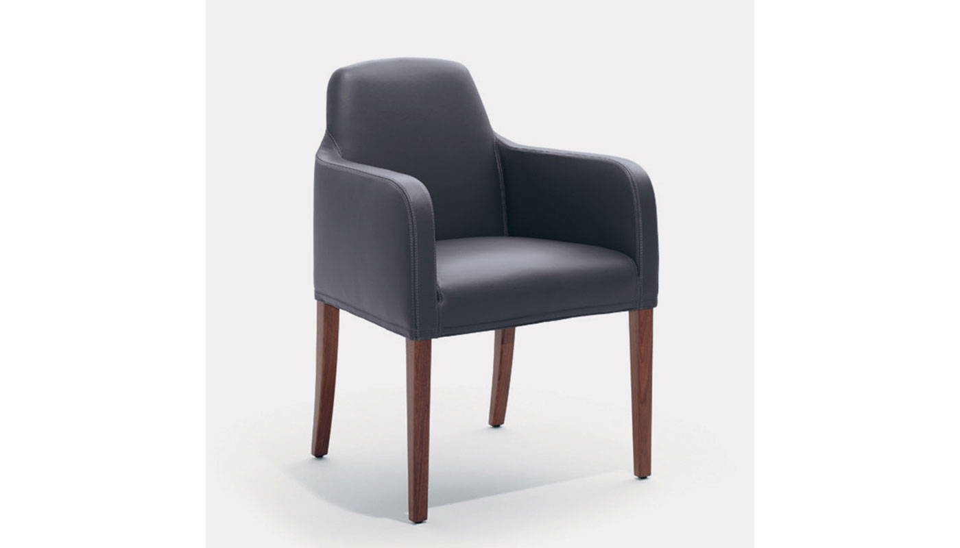 Alma Dining Chair with Arms