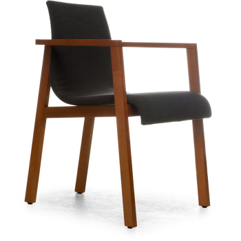Annika Dining Chair with Arms