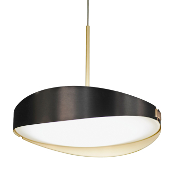 Ring Suspension Light
