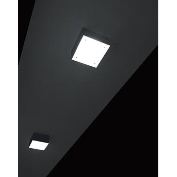 Hako PL LED Ceiling Light