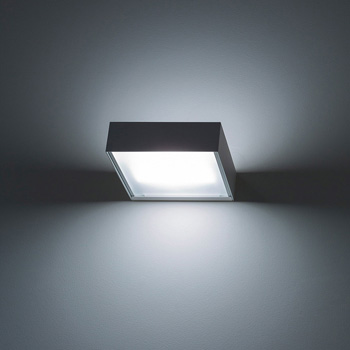 Toast Wall Light