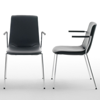DS-717 Dining Chair
