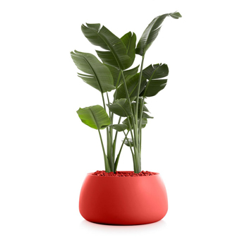 Gobi Planter 3
