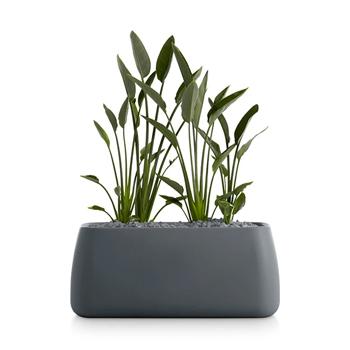 Gobi Planter 5