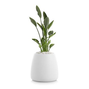 Gobi Planter 1