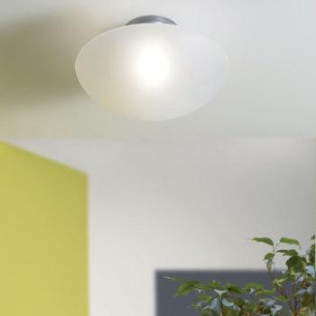 Sillabone Ceiling Light