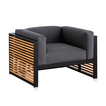 DNA Teak Lounge Chair