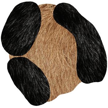 Extinct Animals - Bearded Leopard II Rug