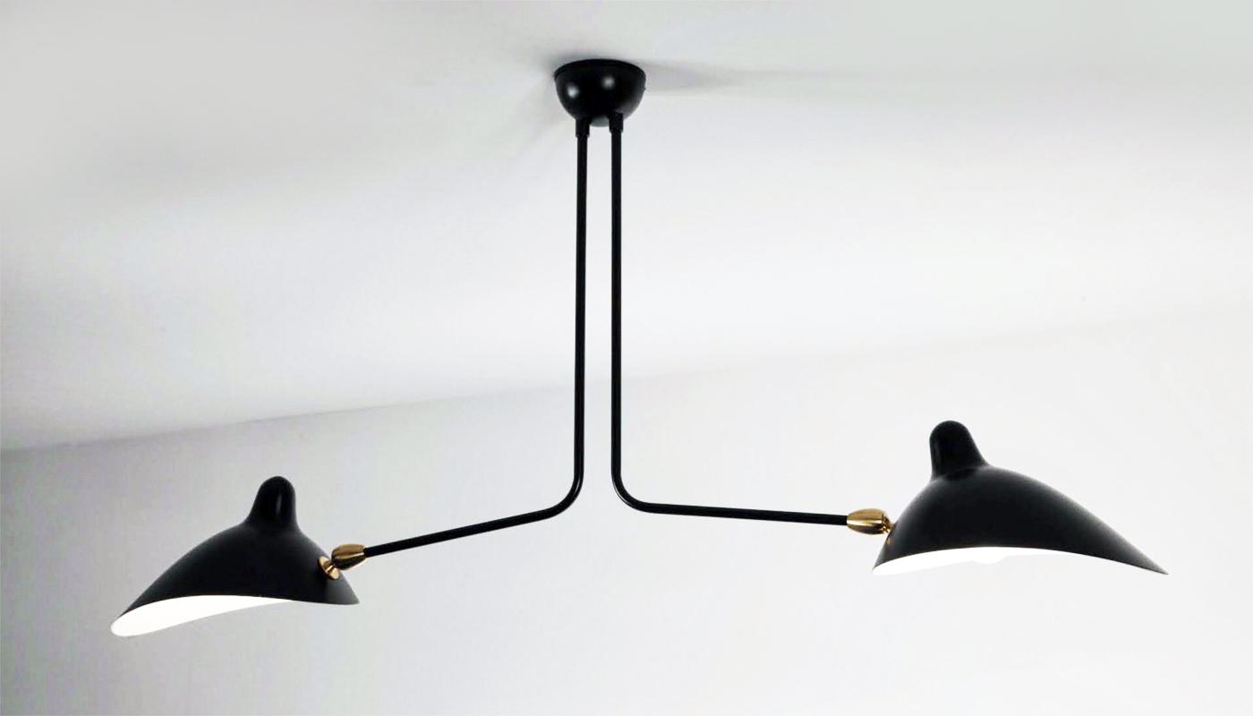2 Arm Ceiling Light