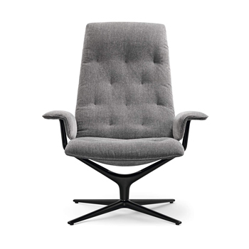 Healey Soft Lounge Chair
