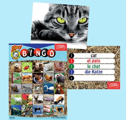 Animal Bingo & Flashcards