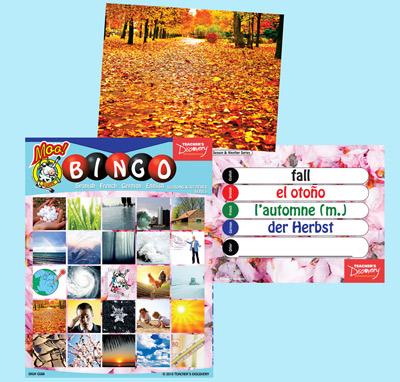 Seasons & Weather Bingo & Flashcards