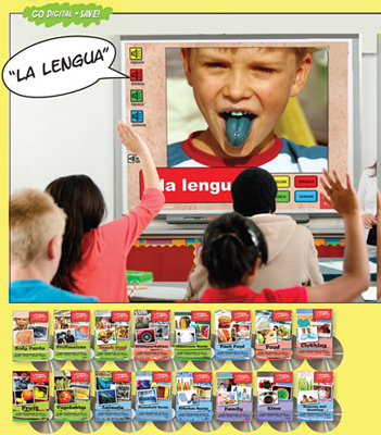Audio Flash Cards Spanish/French/German/English Set of 16 Topics