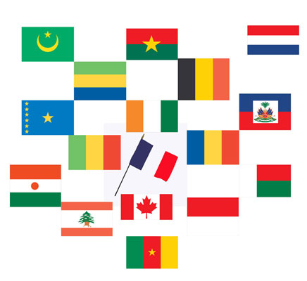 Classroom Sized Flags From French Speaking Countries