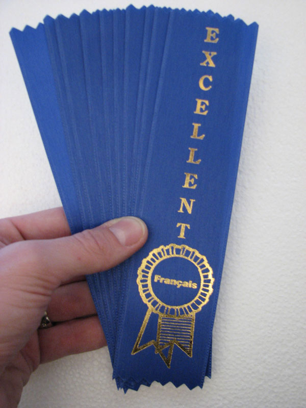 French Excellent Ribbons (Blue)