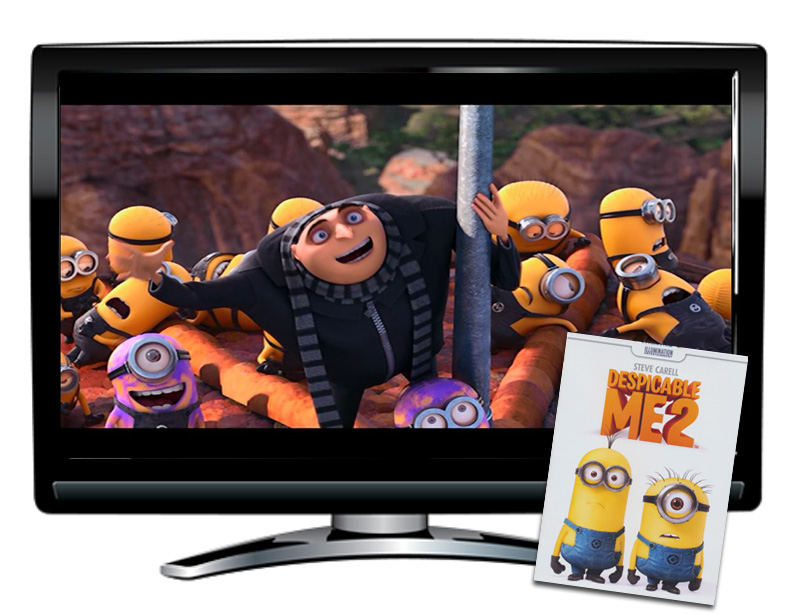 Despicable Me 2 Spanish/French DVD and Activity Packet