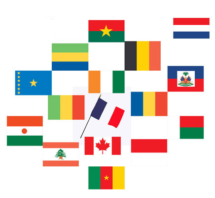 Classroom-Sized Flags of French-Speaking Countries