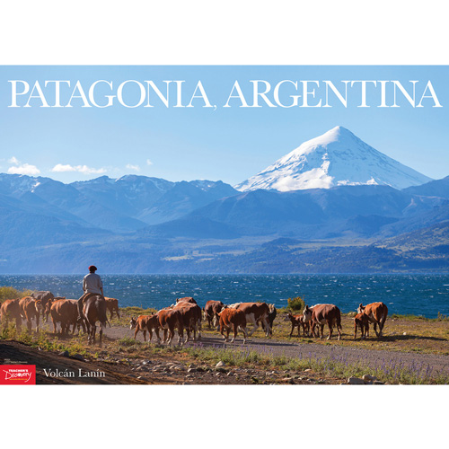 Volcán Lanín: Patagonia Argentina Spanish Travel Poster